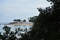 Petite plage du Bois de la Chaize